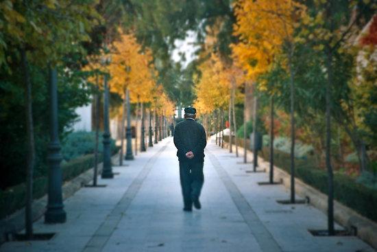 gedankenspaziergang-gedankennahrung
