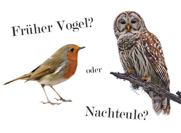 Früher Vogel oder Nachteule?